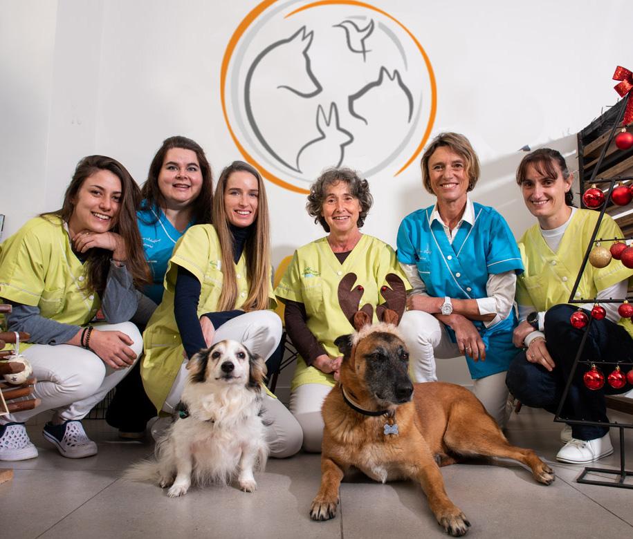 Equipe veterinaire des orangers